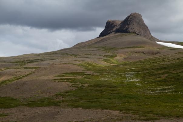 Island_Tag4_1