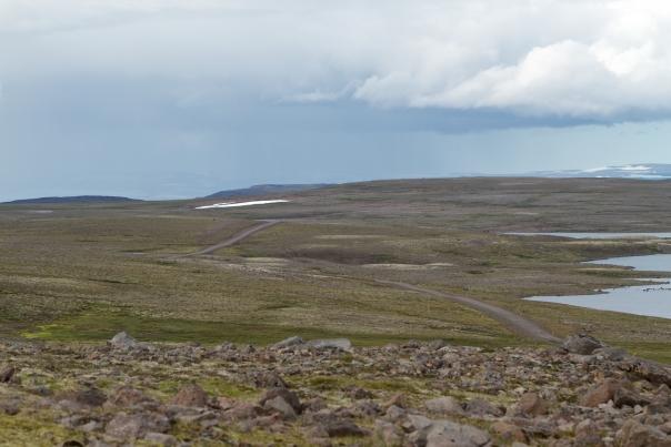 Island_Tag4_3