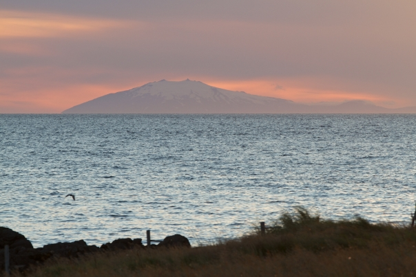 Island_Tag1_2
