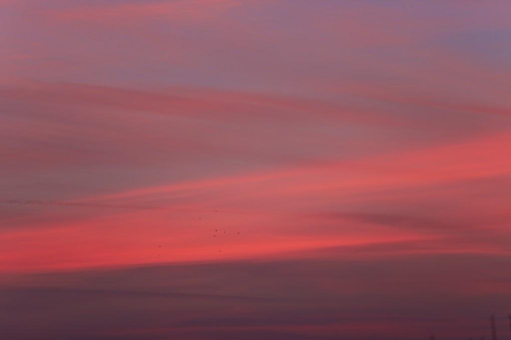 Detailansicht des Sonnenaufgangs am 21. Januar gegen acht Uhr früh. (Bild: B. Knispel)