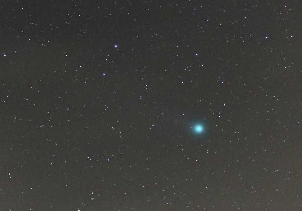 Komet C/2014 Q2 Lovejoy am Abend des 10. Januar 2015. Ausschnitt aus obigem Bild. Bild: B. Knispel