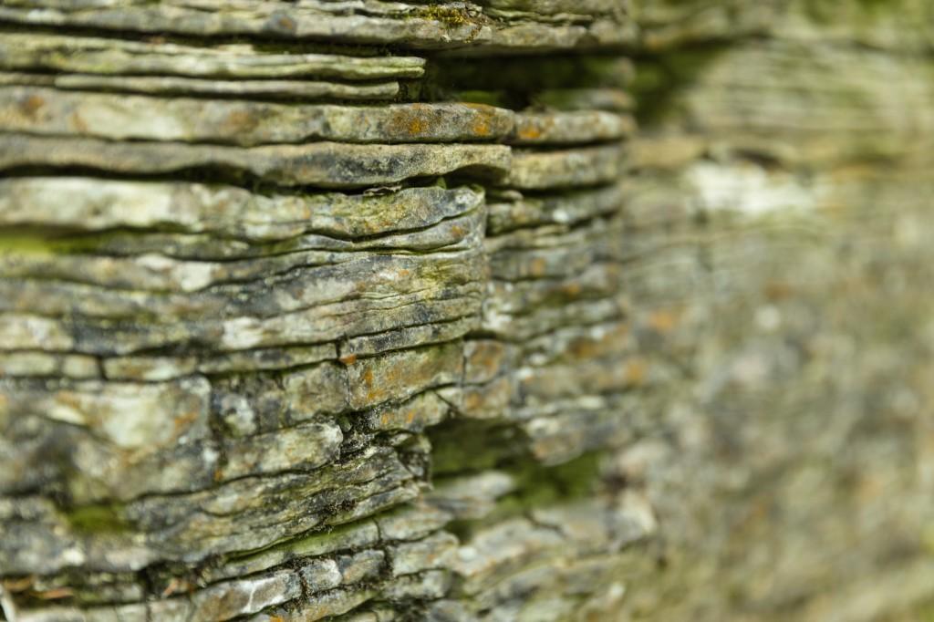 Kalksteinfelsen mit Plattenstruktur am Wegesrand (Bild: B. Knispel)