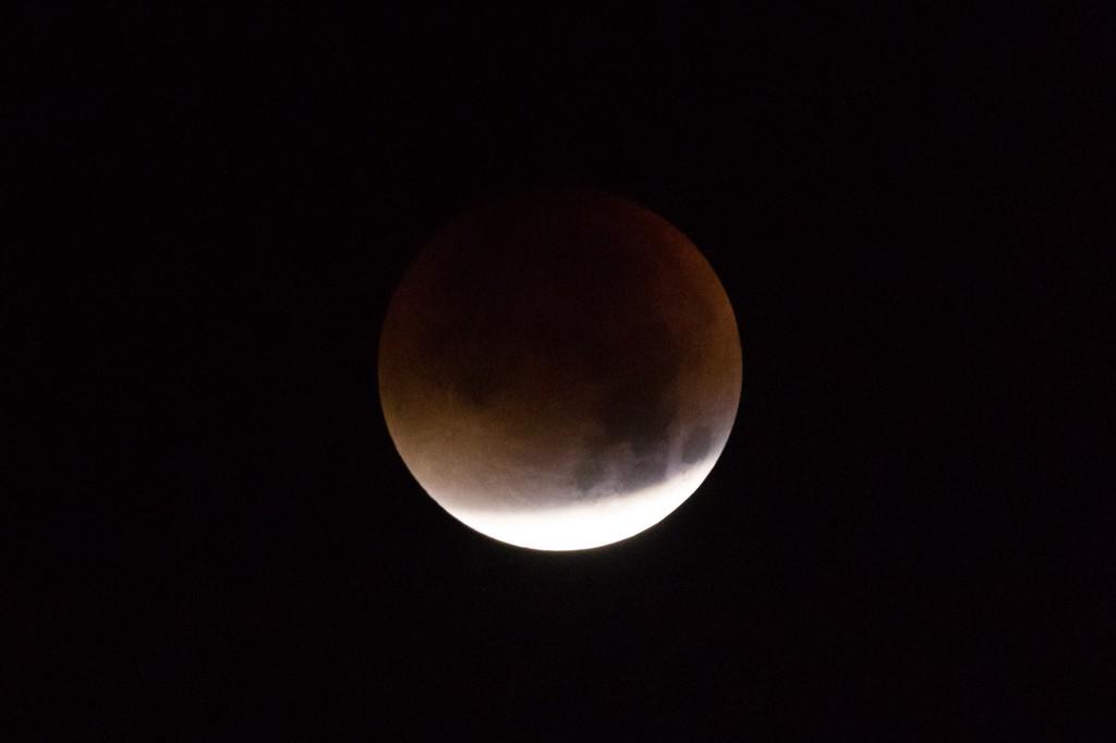 Mit der Kamera muss man den nicht verfinsterten Teil um 4:02 Uhr MESZ überbelichten, um die rötliche Färbung des Kernschattens zu zeigen. (Bild: B. Knispel)