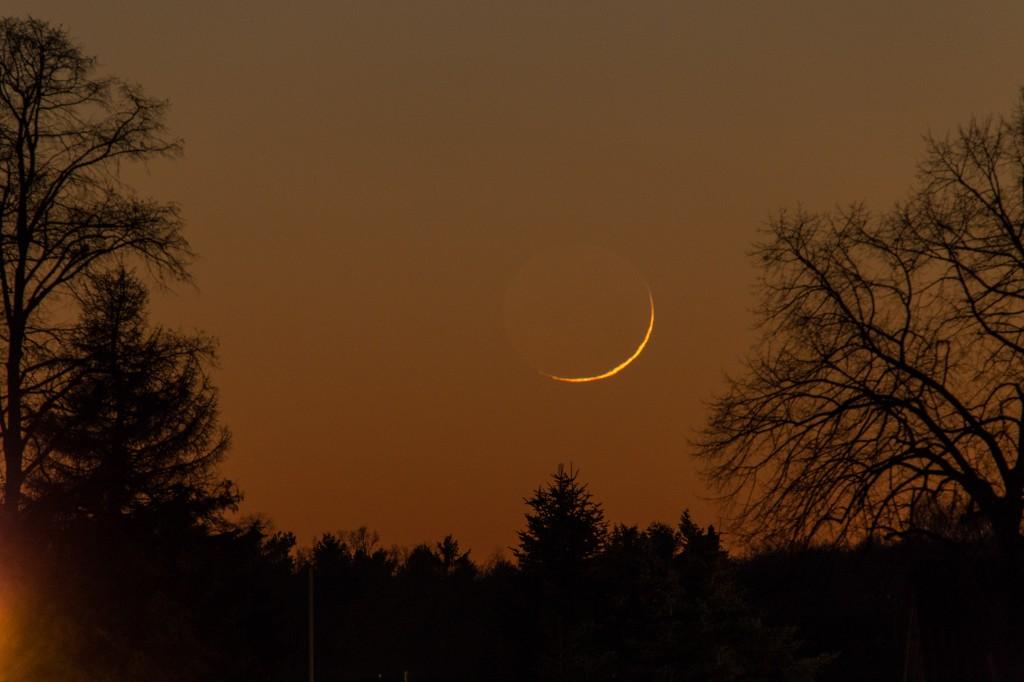 Verformte Sichel um 17:31 Uhr MEZ. Bild: B. Knispel