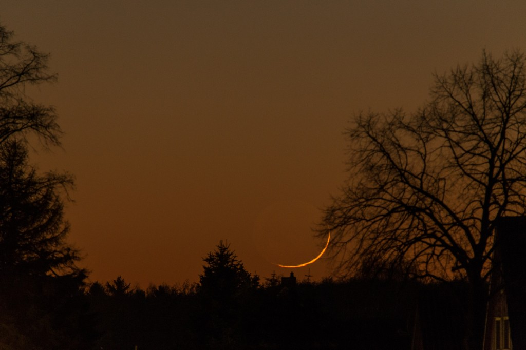 Kurz vor dem Untergang der Mondsichel hinter den Bäumen um 17:35 Uhr MEZ. Bild: B. Knispel