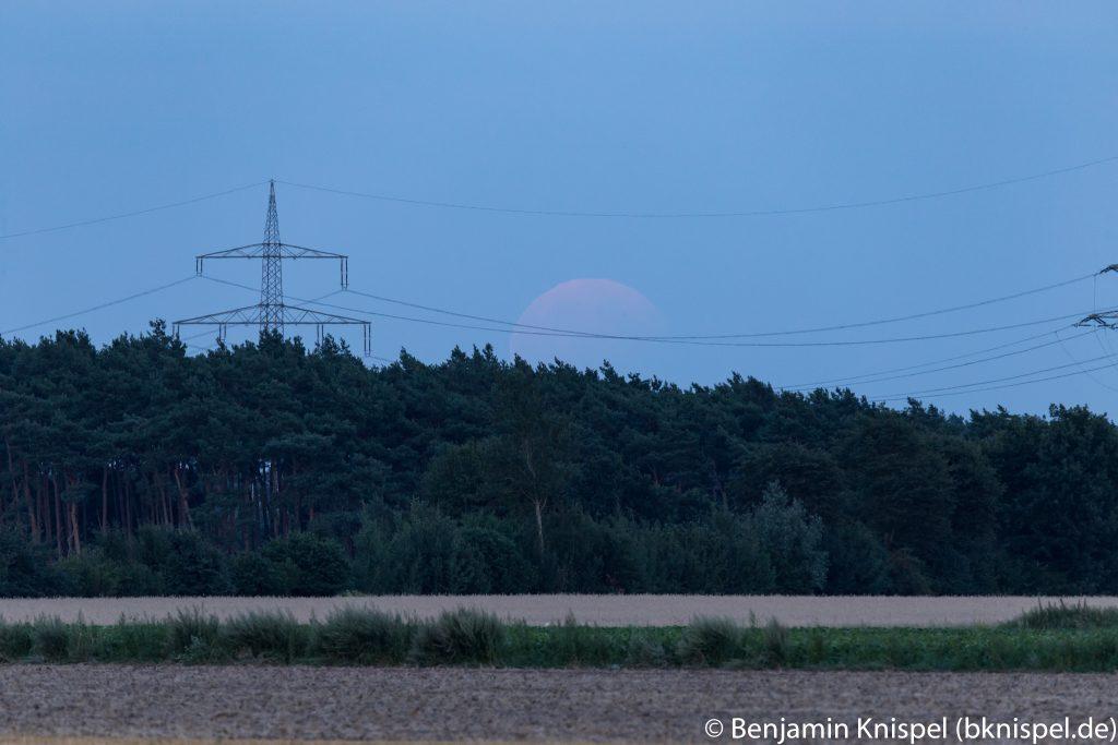 Um 21:01 Uhr lugt der Mond erstmals über den horizontnahen Wald. Die Verdunklung durch den Erdschatten ist andeutungsweise zu erkennen. (Bild: B. Knispel)