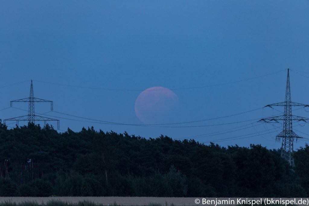 Um 21:03 Uhr steht der teilverfinsterte Mond komplett über dem Waldstück. (Bild: B. Knispel)