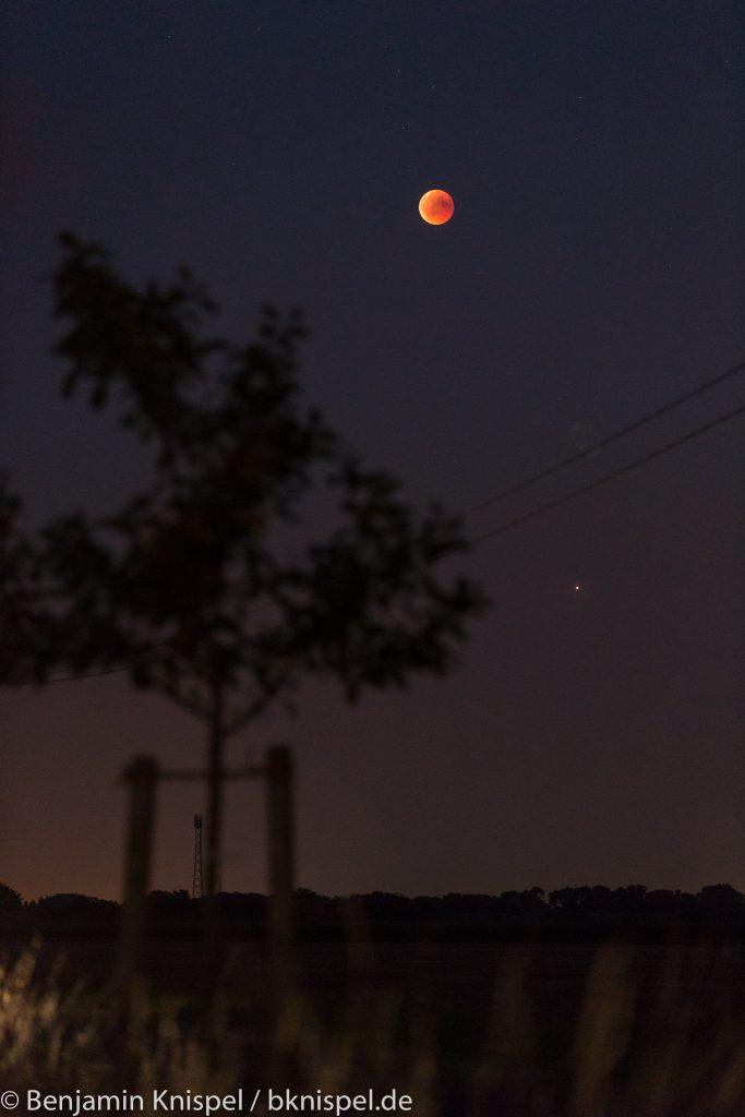 Mond und Mars leuchten an der Obstbaumallee zwischen Elze-Bennemühlen und Meitze. (Bild: B. Knispel)