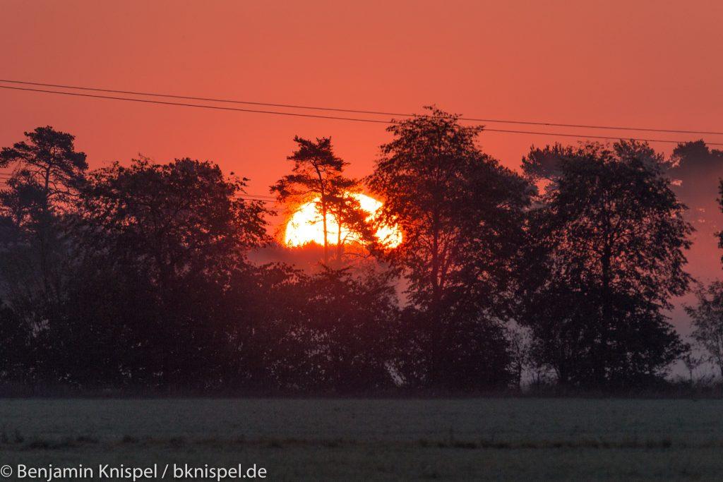 Sonnenaufgang am 2.9.2018 zwischen Elze und Meitze in der Wedemark. (Bild: B. Knispel)